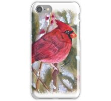 CHRISTMAS RED CARDINAL iPhone Case/Skin