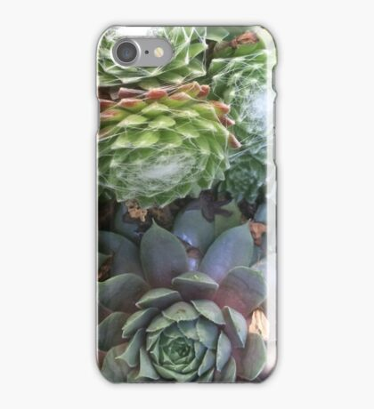 Succulent Table Leeks iPhone Case/Skin