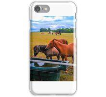 Horses iPhone Case/Skin