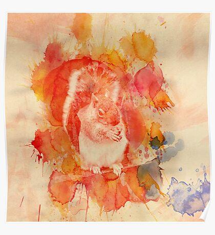 Waterolor Squirrel Poster