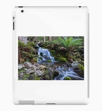 Meander Valley iPad Case/Skin