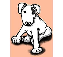 Bull Terrier Puppy Black Eye Patch  Photographic Print