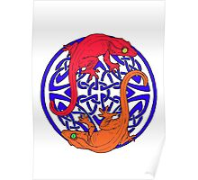 Celtic Crested Geckos In Blue With red and Orange geckos (white background) Poster