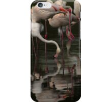 More Flamingos iPhone Case/Skin