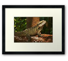 Happy Year of the Water Dragon .. 2012 Framed Print