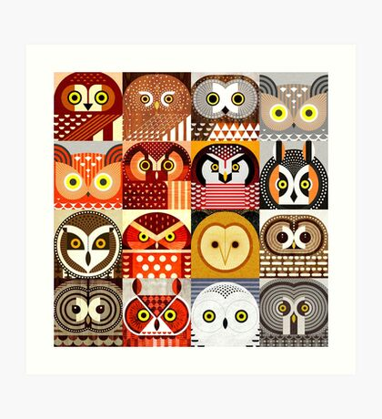 North American Owls Art Print