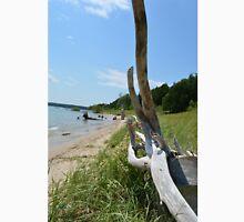 Driftwood at Sand Dunes Park beach, Washington Isand, WI Unisex T-Shirt