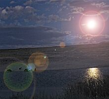 Blue Moon Magic for Wild Horses by Ellen  Holcomb