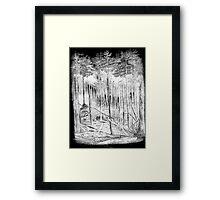 H. Carmienke Del Forest Woodcut Framed Print