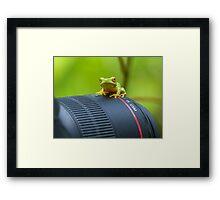 Frog on a Lens Framed Print