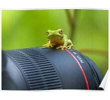 Frog on a Lens Poster