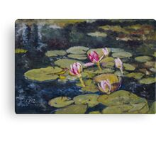 Waterlilies in Oil on Canvas Canvas Print