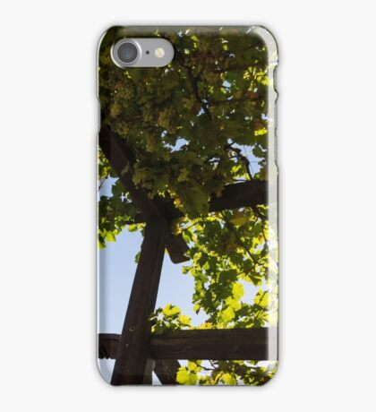 Summer Courtyard - Decorated Eaves and Grape Arbors in the Sunshine iPhone Case/Skin