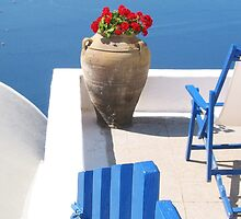 Begonias with a View by Christine Anna Wilson