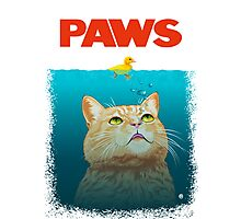 Paws! Photographic Print