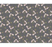 Dandelion Crush dark Photographic Print