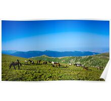 Herd Of Horses high In The Mountains Poster