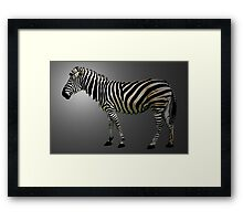 a slice of zebra Framed Print