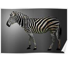 a slice of zebra Poster