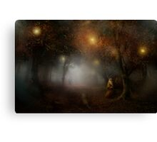 The Brown Wizard Canvas Print