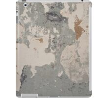 Shades Of Grey iPad Case/Skin