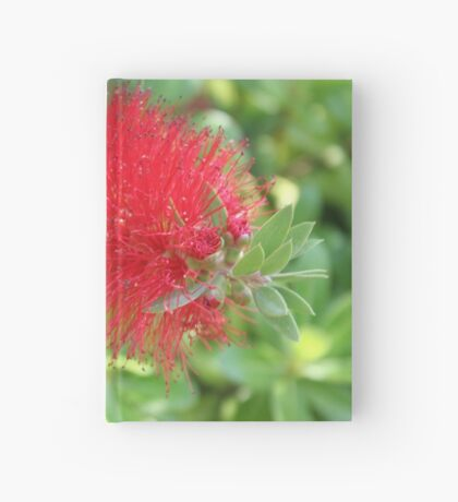 Beautiful Bottle Brush Flower With Garden Background Hardcover Journal