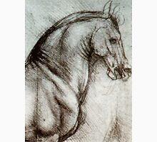 Horse sketches by Leonardo Da Vinci Women's Tank Top