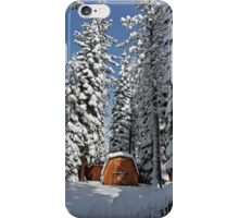 Snow-Flocked Trees and Shed iPhone Case/Skin