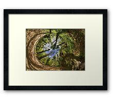 Squirrel Sculpture in Prehen Woods, Derry - Sky In Framed Print