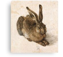 Young Hare by Albrecht Durer Canvas Print