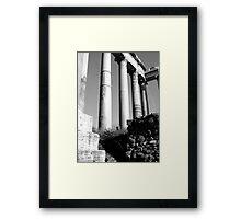 doric variations Framed Print