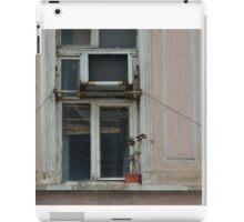 Neglected plant on abandoned windowledge iPad Case/Skin