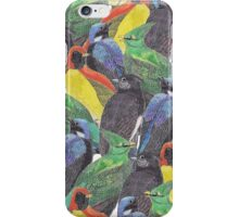 Birds Birds Birds iPhone Case/Skin
