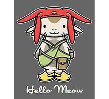 Hello Meow Photographic Print
