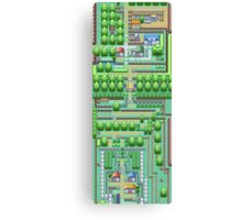 Pokemon Town Canvas Print
