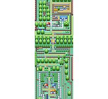 Pokemon Town Photographic Print