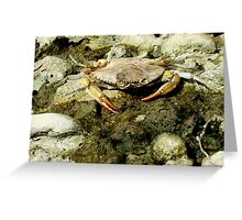Mother of Pearl! It's Mr. Krabs! Greeting Card