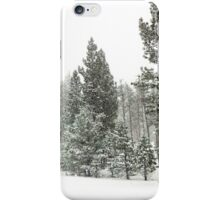 Snowstorm at Washoe Meadows State Park iPhone Case/Skin