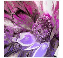 In Sunlight, Petunia Reflections Poster