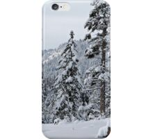 Thinking of Kirkwood iPhone Case/Skin