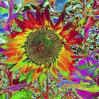 Sunflower: Chroma Fun by Susan Nixon