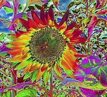 Sunflower: Chroma Fun by Susan Nixon