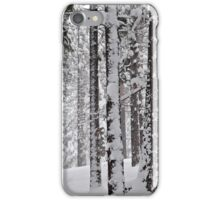 Grove of Snow-Flocked Pine Trees iPhone Case/Skin