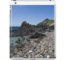 A rocky shore iPad Case/Skin