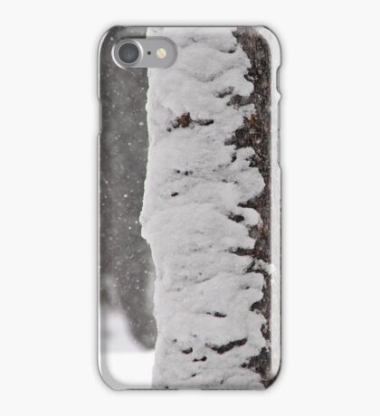 Snow-Flocked Jeffrey Pine Tree iPhone Case/Skin
