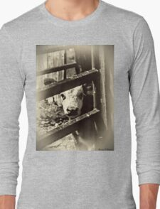 New to the World Long Sleeve T-Shirt