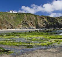 A green beach by Steve plowman