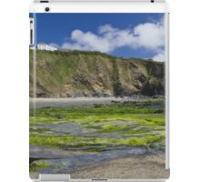 A green beach iPad Case/Skin