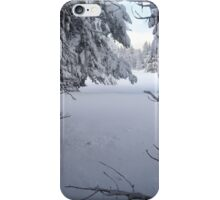 Snowy Tree Tunnel iPhone Case/Skin