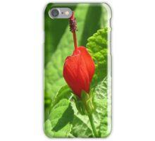 Red Blossom, Arizona  iPhone Case/Skin
